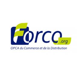formation-wordpress-woocommerce-prestashop-reseaux-sociaux-référencement-seo-Lyon-forco