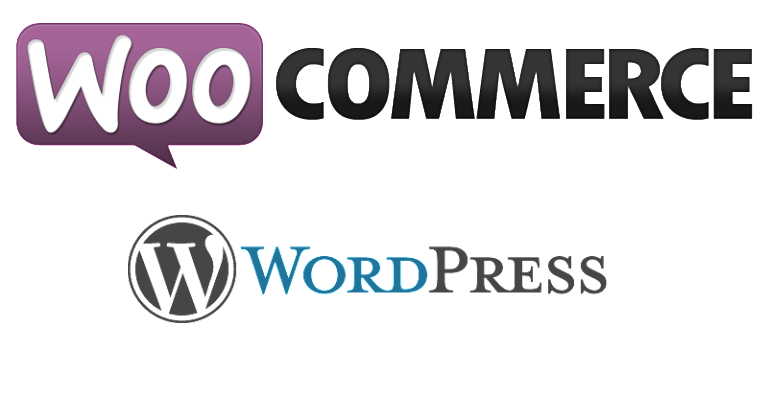 formation organisme lyon creer site internet boutique en ligne wordpress woocommerce référencement