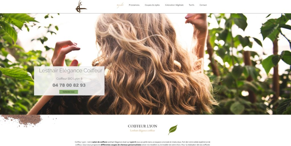webmaster wordpress freelance lyon coiffeur bio web