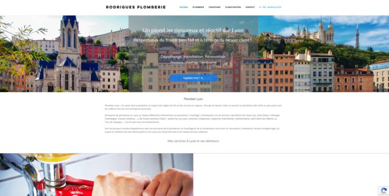 webmaster freelance lyon wordpress formation creer site internet plombier lyon