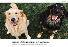 Cabinet vétérinaire Chasse sur Rhône