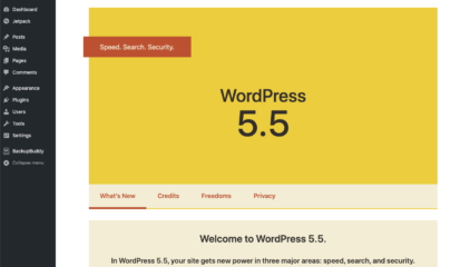 Mise à jour de WordPress 5.5 Attention aux pièges