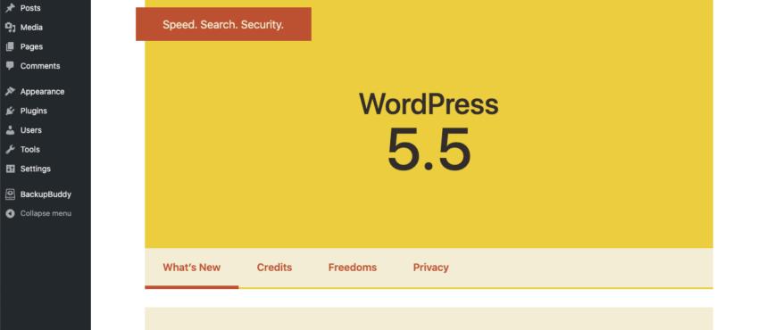 Mise à jour de WordPress 5.5 Attention aux pièges